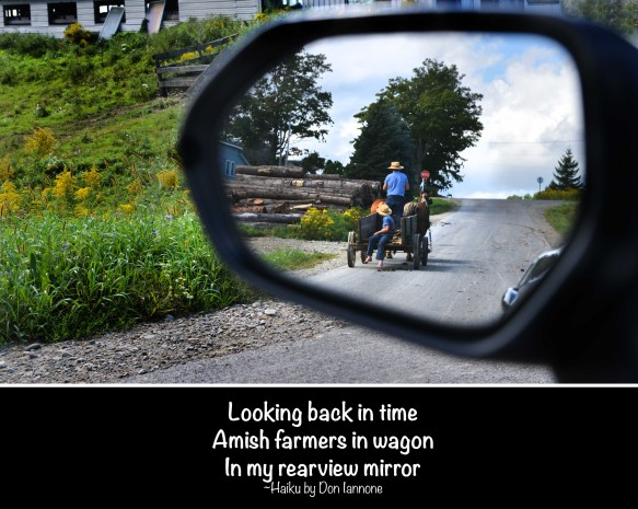 amish in rearview mirror small