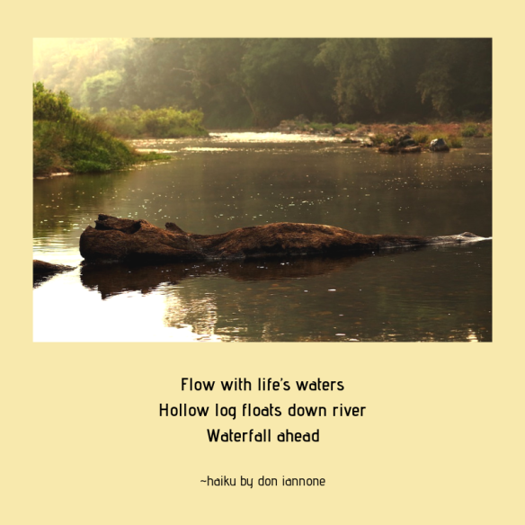log in river haiku.png