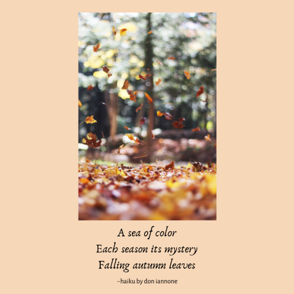 autumn leaves haiku.png