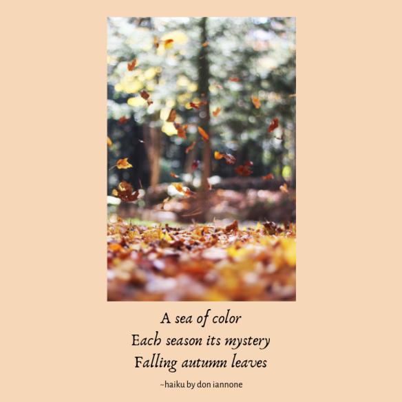 autumn leaves haiku.png