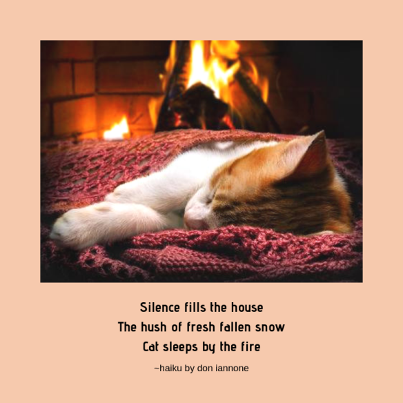 cat by fire haiku.png