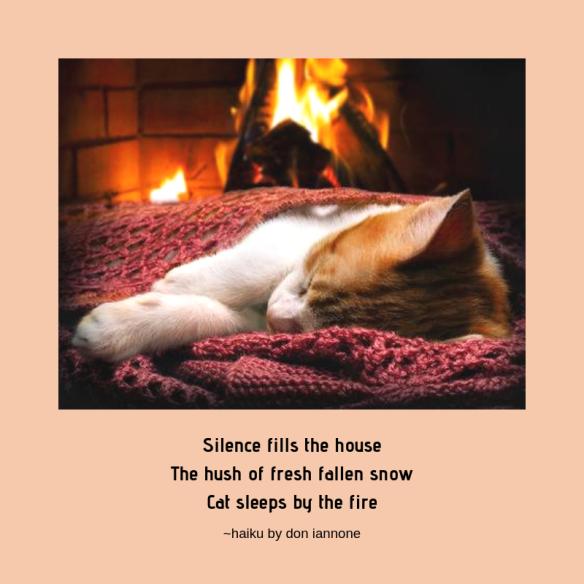 cat by fire haiku.png