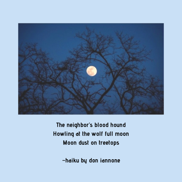howling moon haiku.png