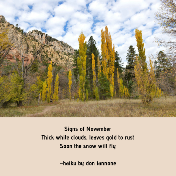 Signs of November Thick white clouds, leaves gold to rust Soon the snow will fly _haiku by don iannone