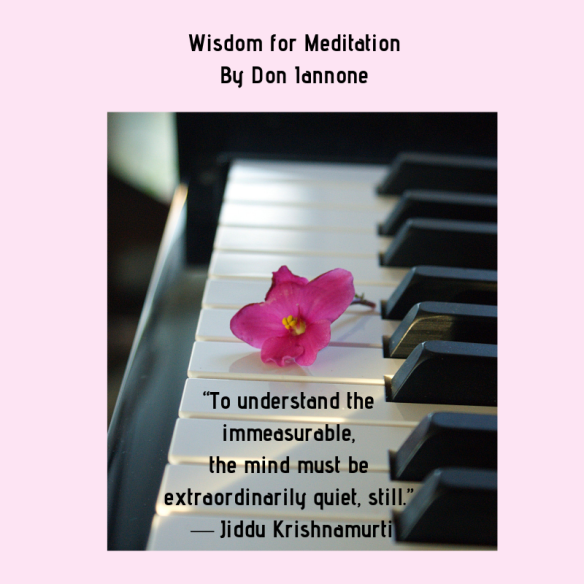 meditation wisdom 2